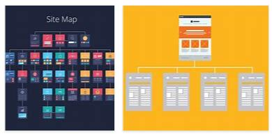 What is website architecture