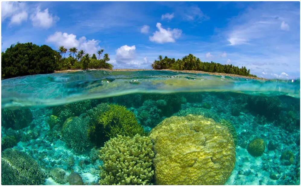 Best Travel Time and Climate for the Marshall Islands